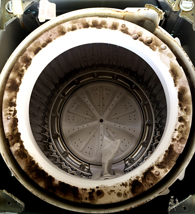 洗濯機クリーニングで分解した洗濯機の汚れ