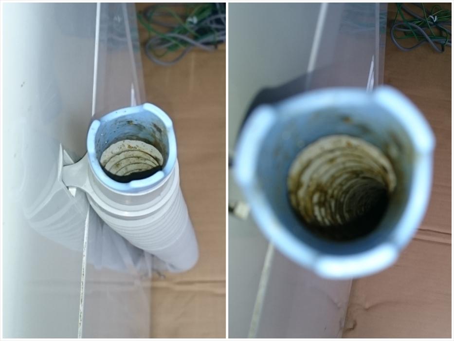 洗濯機の排水ホース内部の汚れ