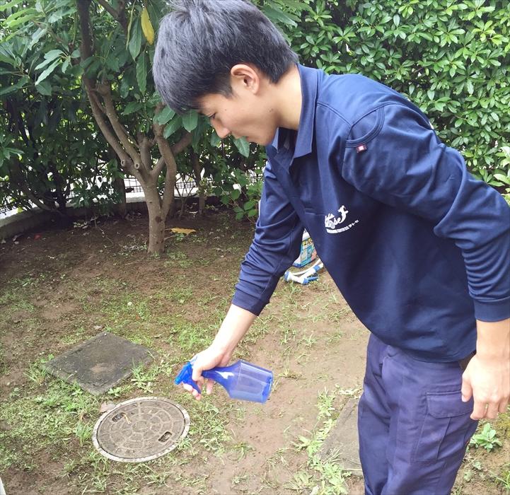 イシクラゲの除去した庭に木酢液を散布するスタッフ