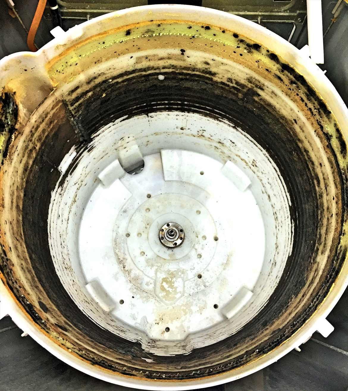 洗濯槽の黒カビ汚れ