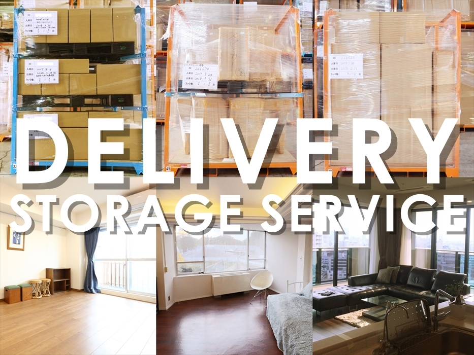 DELIVERY-STORAGE-SERVICE